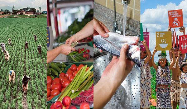 Congreso Internacional de Seguridad Alimentaria y Nutricional propondrá mejoras en nuestro país